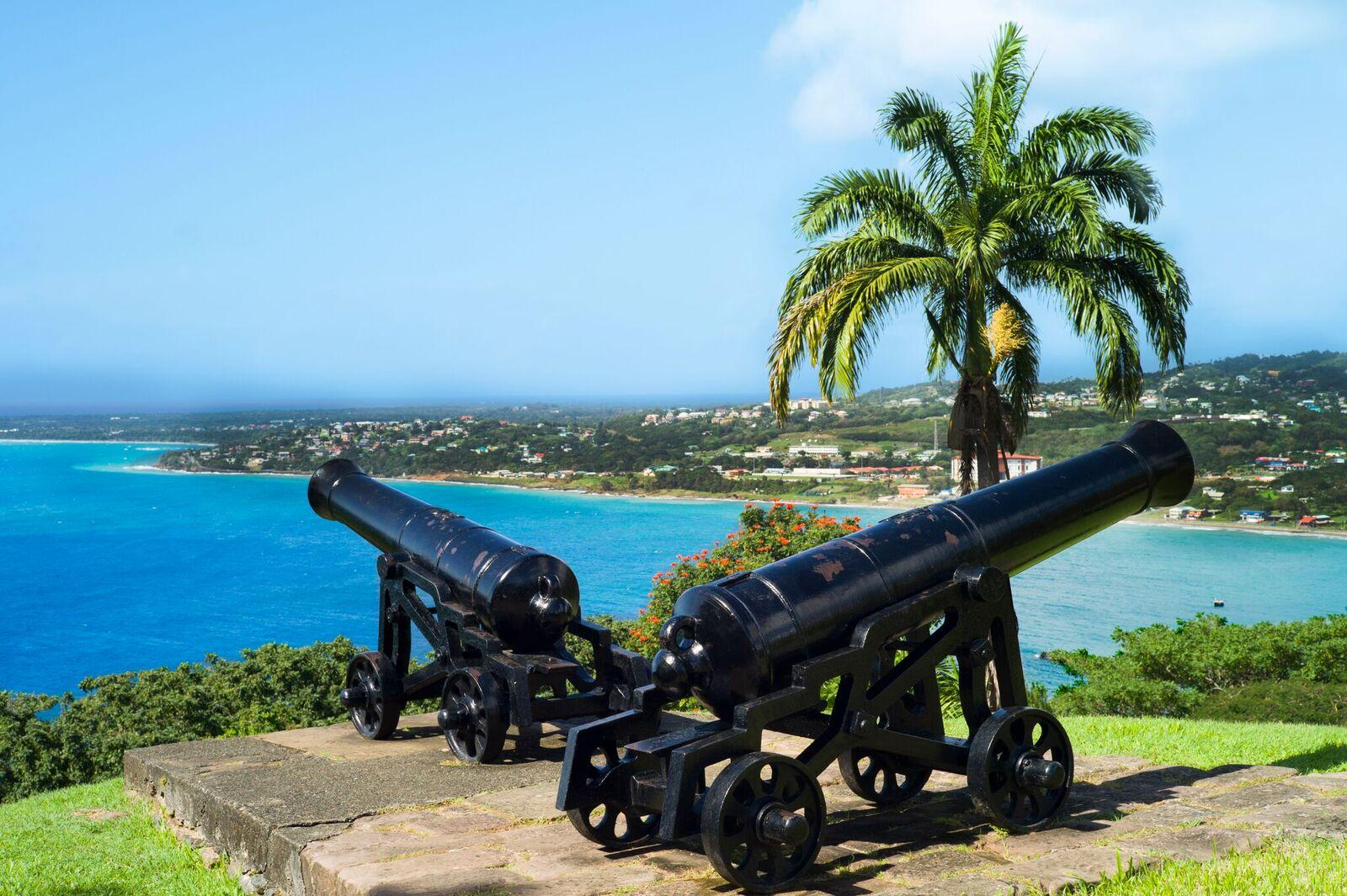 Canons at Fort King George