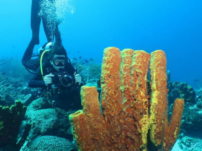 TTAL & Tobago Dive Operators team up to market dive tourism with joint fam trip
